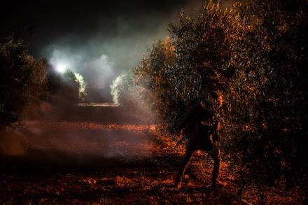 BA'ALOT HASHAHAR / At Dawn / In der Dämmerung