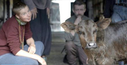 Wies plywajacych krow / The Village of Swimming Cows / Das Dorf der schwimmenden Kühe