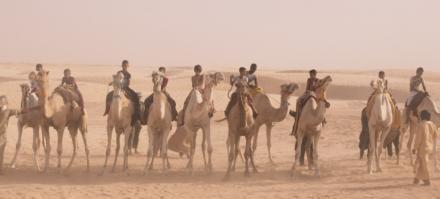 L'enfant chameau / The Camel Boy / Der Kameljunge