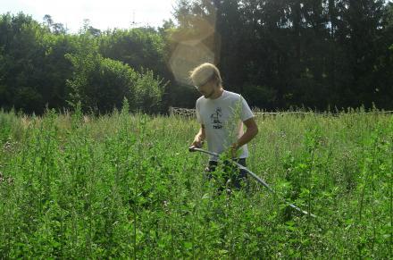 Junge Landwirtschaft gewinnt Neuland / Young agriculture wins unknown territory /