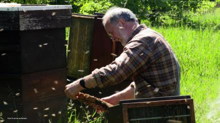 An der Bruchkante - Imker in Mecklenburg / On the Fault-Line – Beekeepers in Mecklenburg /