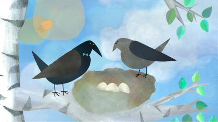 Die weiße Krähe / The white crow /